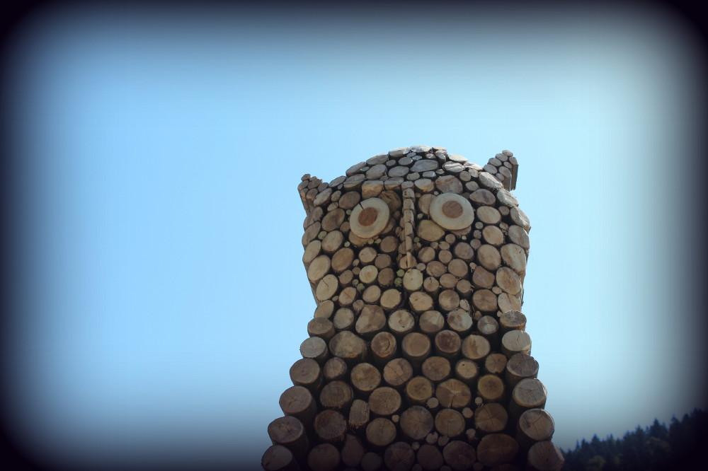 Trono Gufo Land Art Melere - Trichiana Anno 2013