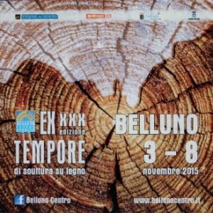 XXX edizione Ex Tempore di scultura su legno Belluno 300x300