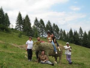 Scultore Paolo Moro. Opera in Fieno. Land Art. Zoncolan Udine 300x225