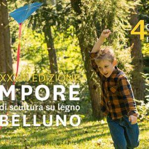 XXXIII Edizione EX Tempore di scultura su legno a Belluno 300x300